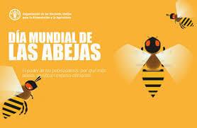 Dia mundial de abejas
